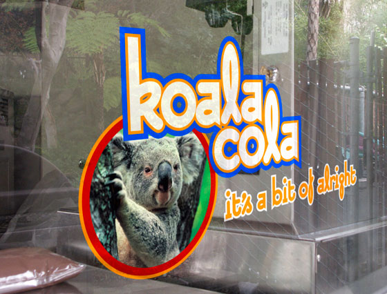window-graphics-koala-cola.jpg