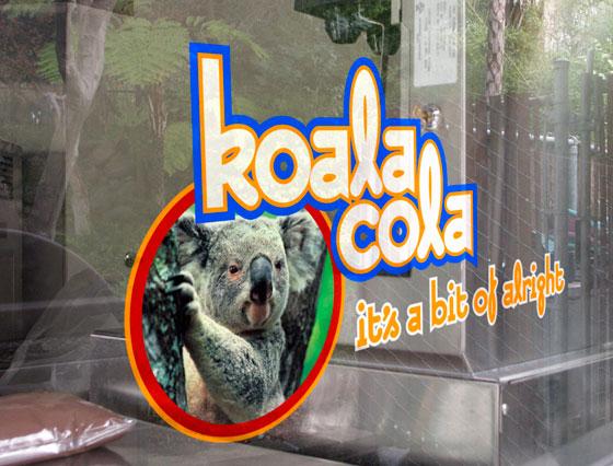 window-graphics-koala-cola.jpg